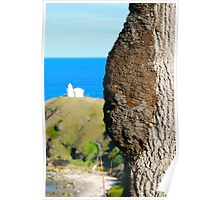 Lighthouse Termite Tree  Poster