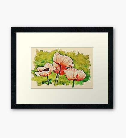 Pink Poppies - textured Framed Print