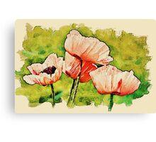 Pink Poppies - textured Canvas Print