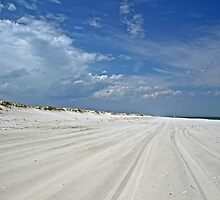 Endless Summer - Island Beach State Park - NJ - USA by MotherNature