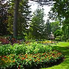 Toronto Edwards Gardens by MarianBendeth