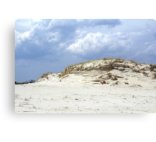 Sculpted Sand Dune - Island Beach State Park - NJ - USA Canvas Print