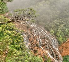 Wentworth Falls from above by Michael Matthews