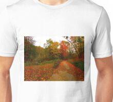 Cinnamon Days T-Shirt