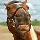 Animal - Horse - I finally got my braces off by Mike  Savad