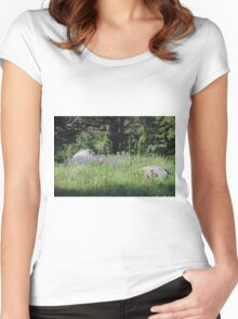 Patch of Paradise Women's Fitted Scoop T-Shirt