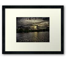Golden Bayou Framed Print