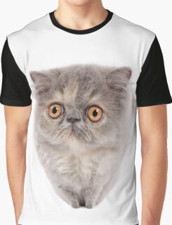 Cute Persian kitten with wide eyes Graphic T-Shirt