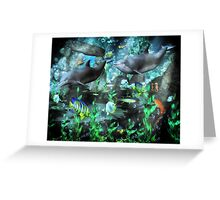 Dolphin's Under The Sea   Greeting Card