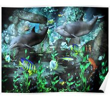 Dolphin's Under The Sea   Poster