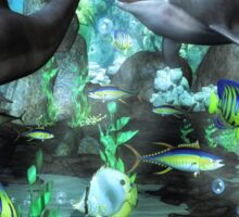 Dolphin's Under The Sea   Sticker