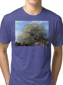 The Merry, Merry Month Of May Tri-blend T-Shirt