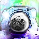 Space Pug by Extreme-Fantasy