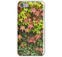 Lost in Autumn iPhone Case/Skin