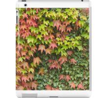 Lost in Autumn iPad Case/Skin