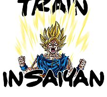 Train Insaiyan Goku Super Saiyan 2 by TheRising