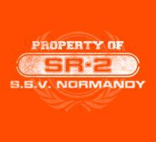 Naval Property of SR2 Kids Tee