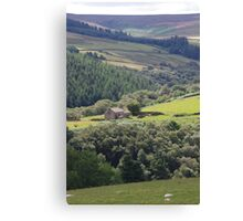 Remote Dwelling Canvas Print