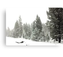 Snowstorm at Washoe Meadows State Park Canvas Print