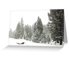 Snowstorm at Washoe Meadows State Park Greeting Card