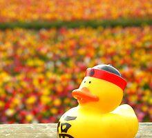 Tulip Ducky by thedustyphoenix