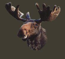 Smilin' Moose by SenorTaco5