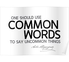 common words to say uncommon things - schopenhauer Poster