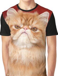 Grumpy Red Persian Cat Graphic T-Shirt