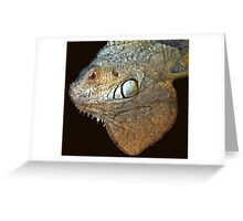 exotic reptile Greeting Card