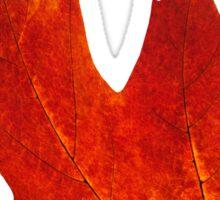 Colorful maple leaf Sticker