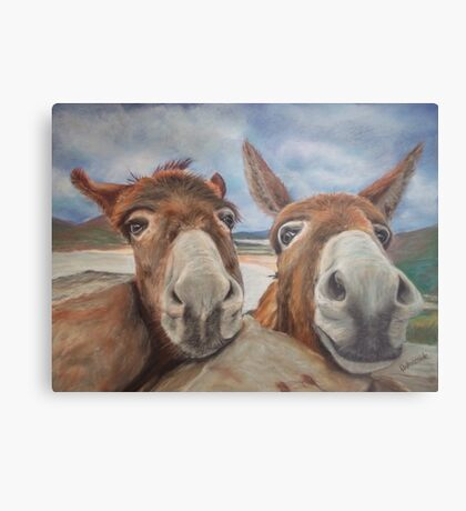 Donegal Donkey Duo Metal Print