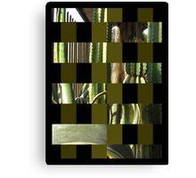 Cactus Garden Art Rectangles 15 Canvas Print