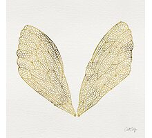 Cicada Wings in Gold Photographic Print