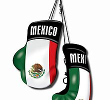 MEXICAN BOXING GLOVES by bumpin