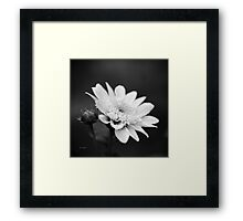Black and White Flower Framed Print