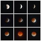 Lunar Eclipse  by Cody  VanDyke