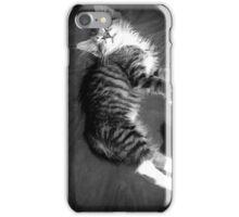 Kitten at Rest iPhone Case/Skin