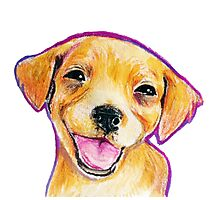 Golden Retriever Puppy Smiling Happy Drawing Photographic Print