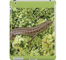 Skink on Asparagus blossoms iPad Case/Skin