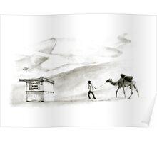 books in the desert Poster