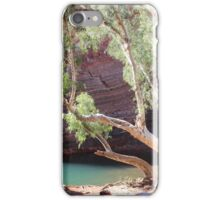 Hamersley Gorge, with photographer iPhone Case/Skin