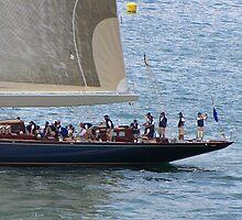 Working crew on the J class yachts by Nancy Richard