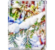 Colours in the Snow iPad Case/Skin