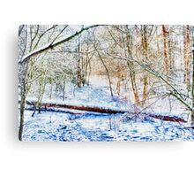 Forest in the Snow HDR Canvas Print