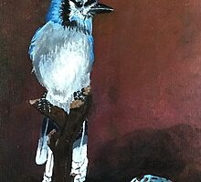Blue jay Painting by careball