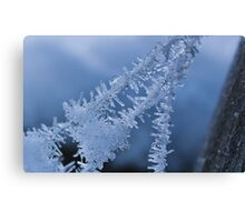 Ice Crystals on Web Canvas Print