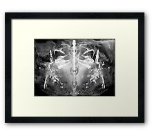 Universum Framed Print
