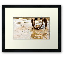 Mud Ball  Framed Print