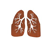 Lungs. Photographic Print