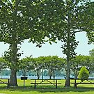 Waterfront Park by WeeZie